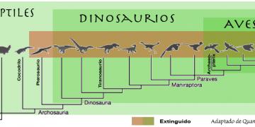 Una clasificación moderna de reptiles, aves y dinosaurios.
